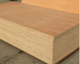 Price barato Commercial Plywood para Furniture