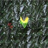 O jardim decorativo protege a conversão artificial da cerca plástica da folha
