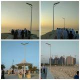10W LEDの庭の誘導を用いる太陽街灯