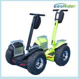e-Fiets 4000W Ecorider Autoped van het Golf van de Blokkenwagen van het Lithium van Samsung 72V de Elektrische