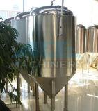 Fermentador inoxidável agitado mecânico sanitário de Sreel para a planta (ACE-FJG-T6)