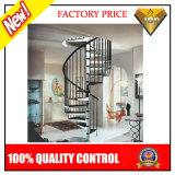 Escadaria de madeira da escada da balaustrada de Inox (JBD-S2)