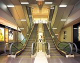 35 escada rolante da largura da etapa do grau 1000mm na alameda de compra