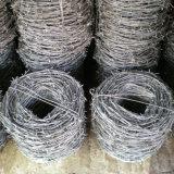 二重線のとげがある鉄の金網