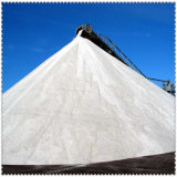 Cloreto de sódio da oferta 99% de Producter/sal industrial