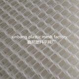 Rete metallica di /Plastic del reticolato del pollame