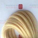 Le volume de la meilleure qualité de cheveu avec des extensions homme-homme européennes de cheveu