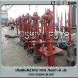 Pompe centrifuge de boue de carter de vidange d'axe de traitement des eaux rayée par caoutchouc vertical