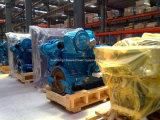 pelotillas de madera de conjunto de generador del combustible de la biomasa 20-1100kVA