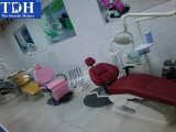 Модные & Luxury Складная Эффективное Стоматологическое кресло (TDH-F6)