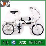 Mini 16 '' bicyclettes/vélos électriques se pliants, Ebike Tz161 pour des gosses avec le moteur et la batterie au lithium sans frottoir