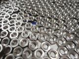 티타늄 견과/소형 기계로 가공 Ti2 육 견과 M6