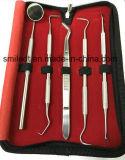 Kit de instrumentos de mão de terapeutas para higiene dental Orcal Care