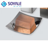 Chrome Finishing Sy-Ne11-13를 가진 304 스테인리스 Steel Tableware Soap Dish