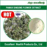 Extracto de la flor del Ginseng de Panax