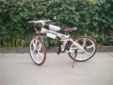 26 بوصة [36ف] [250و] [350و] يطوي جبل دراجة كهربائيّة ([يك-ب-008])