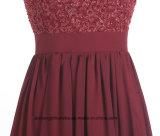 Frauen-Spitze Sleeveless V-Stutzen Abend-Partei-Abschlussball-Kleid