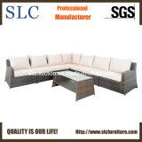 Sofa sectionnel réglé d'hôtel de meubles de patio de sofa en osier réglé de rotin (SC-3005-B)