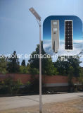 6W-80W modificado para requisitos particulares integró todos en una luz de calle solar al aire libre del LED