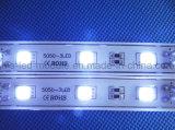 가벼운 상자를 위한 선택적인 방출 색깔 DC12V LED 모듈