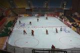 Carrelage professionnel de cour d'hockey d'Asie Nicecourt (professionnel de Hockey-Champion/)