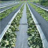 農業の庭の使用によって編まれるファブリック