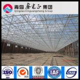 최고 디자인 강철 구조물 창고 (SS-73)