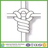Rete metallica di recinzione ad alta resistenza galvanizzata per la maglia dell'azienda agricola