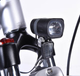 Bici eléctrica sin cepillo Easyland del nuevo del diseño neumático de Kenda