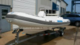 Aqualand 16feet Stylish Rigid Infatable Boat 또는 Rib Boat9rib480c)