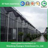 Estufa de vidro do baixo custo do fornecedor de China para o uso comercial