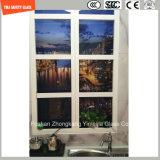 la stampa del Silkscreen della vernice di 3-19mm Digitahi/incissione all'acquaforte acida/hanno glassato/piano del reticolo/hanno piegato Tempered/vetro temperato per l'hotel, parete domestica/pavimento/divisorio con SGCC/Ce&CCC&ISO
