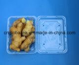 명확한 플라스틱 식품 포장 광주리 야채를 위한 처분할 수 있는 플레스틱 포장 상자