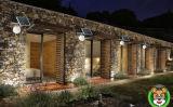 جديدة إبداعيّة شمسيّ منتوجات حديقة ضوء لأنّ إستعمال بيتيّة
