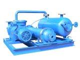 Jzj2b300-2.2 enraíza a unidade do vácuo do Água-Anel