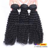 Vente en gros de cheveux bouclés humains sans traitement Remy cheveux peru