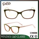 Frame Sr6064 van de Glazen van het Oogglas van Eyewear van de Voorraad van de Acetaat van het nieuwe Product het In het groot Optische