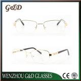 Het recentste Nieuwe Populaire Optische Frame Tb3883 van het Oogglas van Eyewear van het Metaal van de Stijl