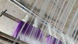 20d高い等級の衣類の物質的な編むこと、600rpm