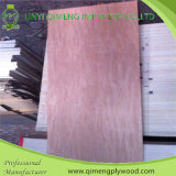 Competitive PriceのBbcc Grade Bintangor Door Skin Plywood