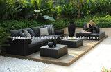 2014 جديدة تصميم حديقة أريكة [رتّن] أثاث لازم ([س0163])