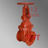 Valvola a saracinesca della valvola di regolazione di protezione antincendio
