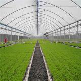 Опытная конструированная дом тоннеля Multi-Пяди зеленая согласно системе клиента необходимый