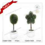 Hete Kunstmatige Groene Topiary van de Verkoop voor Levering voor doorverkoop