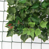La plastica decorativa di verde del foglio dell'EDERA del giardino protegge la barriera artificiale della rete fissa