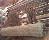 1/2inch, 1inch ha galvanizzato la rete metallica del pollo/collegare di pollo esagonali