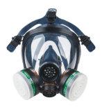Respiratori Ce2205 della maschera di protezione piena dei filtri dal silicone due