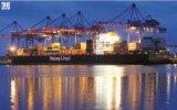 A porta a Door/LCL/FCL/consolida o serviço de China ao transporte de Dubai
