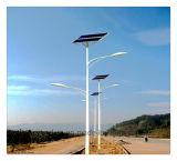 공장 가격 5m 20W 태양 LED 거리 조명