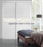 Verstrek Garderobe Glas, Clothespress Glas, Glas Armoire voor Huis